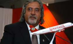 Vijay Mallya says he fears for his life in India