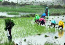 agri varsity courses for farmers without age qualification