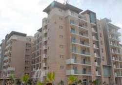 centre to distribute 600 cwg village flats to govt depts