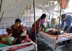 dengue outbreak actual cases could be 282 times more than