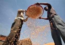 food reforms on the cards subsidised grains may be limited