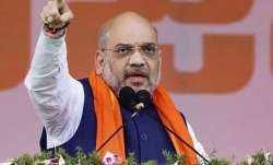 Ram Mandir to be constructed within four months: Amit Shah
