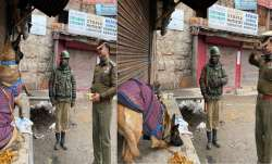 In picture-perfect moment, CRPF dog salutes Commanding