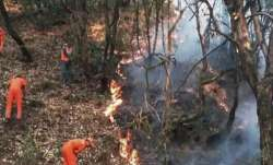 A file photo of forest fighters in Uttarakhand dousing a
