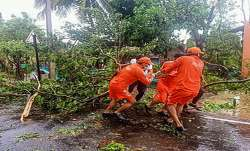 NDRF personnel clear uprooted trees from a road following