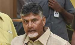 Former Andhra Pradesh Chief Minister and Telugu Desam Party (TDP) president N. Chandrababu Naidu