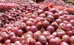 Govt bans export of onion seeds