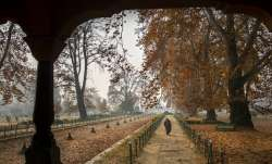 North India, winters