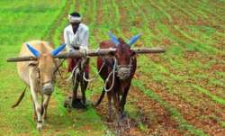 Kisan Diwas 2020: Wishes, quotes, HD Images, WhatsApp and Facebook status to share on National Farme