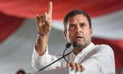 BJP-RSS 'fake Hindus', they 'use' religion: Rahul Gandhi