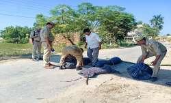 lakhimpur case arrest