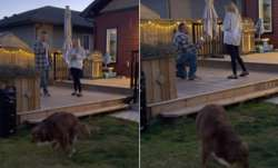 Video of man proposing to his girlfriend goes viral. Their dog's 'potty break' takes the limelight