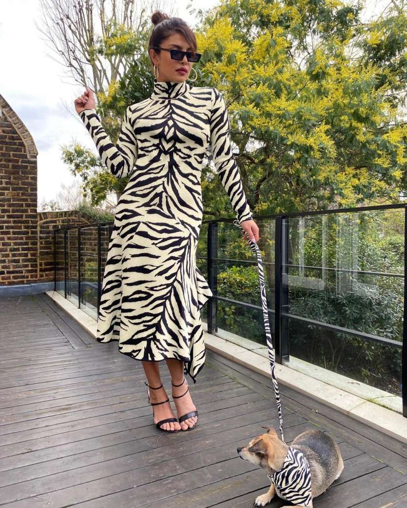Keeping it chick and classy, Priyanka opted for these black rectangular sunnies while posing with her dog.