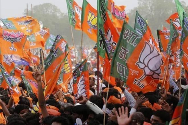 Bhartiya Janata Party flags- File Photo