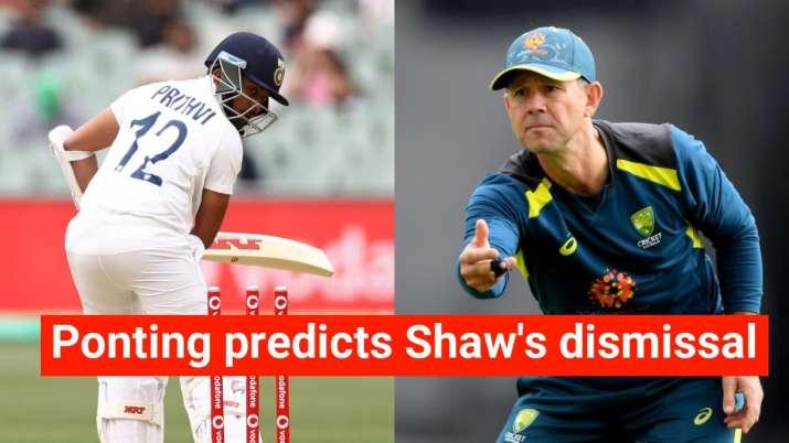 ricky ponting, ricky ponting prithvi shaw, prithvi shaw duck, prithvi shaw india, india vs australia